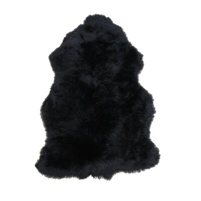 Sheepskin Black Rug Rug Size: 4 x 6