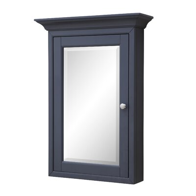 24.25 X 33 Surface Mount Medicine Cabinet Finish: Charcoal Gray