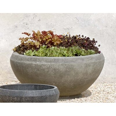 Cast Stone Pot Planter Finish: Alpine Stone, Size: Small P-407C-AS