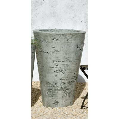 Cast Stone Pot Planter Size: Large, Finish: Alpine Stone P-422A-AS