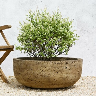 Cast Stone Pot Planter Finish: Alpine Stone P-438-AS