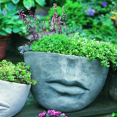 Cast Stone Pot Planter Finish: Alpine Stone, Size: Large P-176-AS
