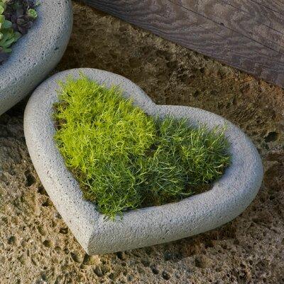 Garden Terrace Heart Cast Stone Pot Planter Size: Small, Finish: Alpine Stone P-442-AS