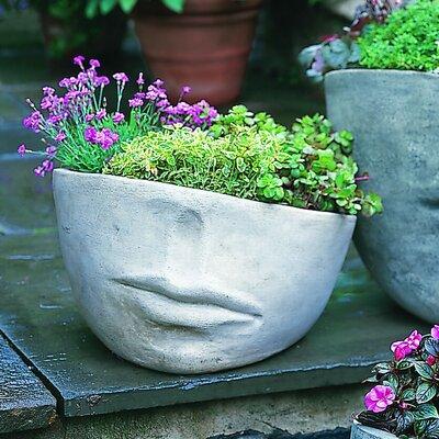 Cast Stone Pot Planter Size: Medium, Finish: Alpine Stone P-175-AS