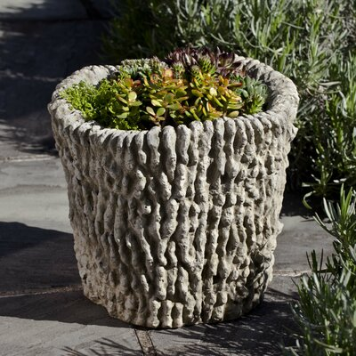 Cast Stone Pot Planter Finish: Alpine Stone P-633-AS