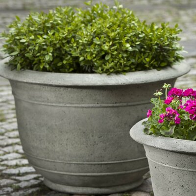 Padova Cast Stone Pot Planter Size: Large, Finish: Alpine Stone P-593-AS
