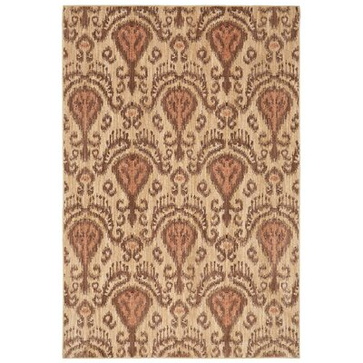 Brentford Brown Area Rug Rug Size: 8 x 11