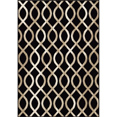 Amini Black/Beige Area Rug Rug Size: 53 x 76