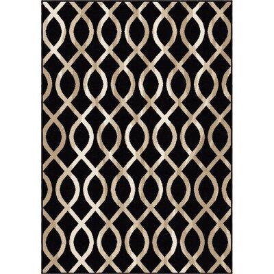 Amini Black/Beige Area Rug Rug Size: 710 x 1010