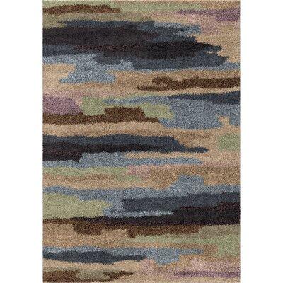 Amir Area Rug Rug Size: 53 x 76