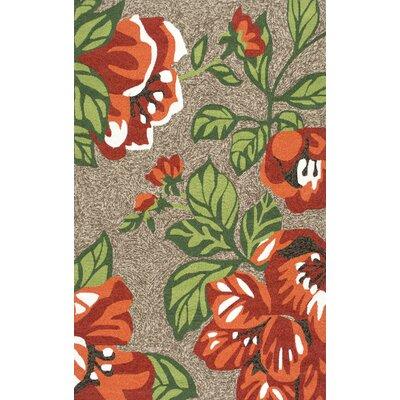 Bromberg Hand Hooked Terracotta Indoor/Outdoor Area Rug Rug Size: 8 x 10