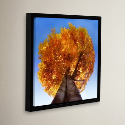 "Burning Tree Framed Photographic Print Size: 10"" H x 10"" W x 2"" D RDBS4446 33281799"
