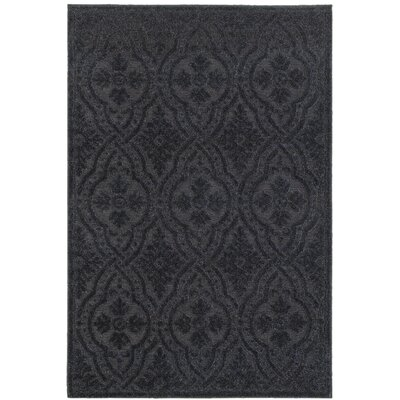 Michigan Black Area Rug Rug Size: Rectangle 52 x 76