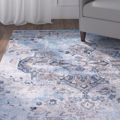 Ates Distressed Medallion Area Rug Rug Size: 33 x 43