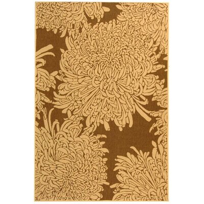 Barhill Brown/Natural Indoor/Outdoor Area Rug