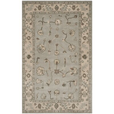 Ringwood Hand-Tufted Tan/Gray Area Rug Rug Size: 5 x 8