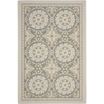 Barhill Anthracite/Light Gray Indoor/Outdoor Area Rug