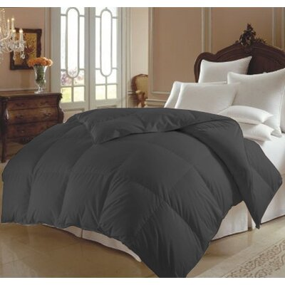 All Season Polyester Down Alternative Comforter Color: Gray, Size: Twin