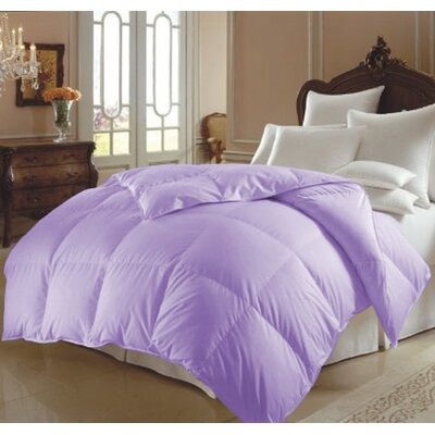 All Season Polyester Down Alternative Comforter Color: Lilac, Size: King