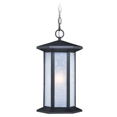 Alpha 1-Light Outdoor Hanging Lantern