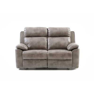 McLelland Reclining Loveseat Upholstery: Gray