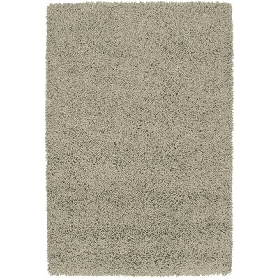 Botello Taupe Rug Rug Size: 36 x 53