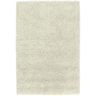 Botello Cream Rug Rug Size: 5 x 79