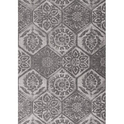 Clouser Gray Area Rug Rug Size: 5 x 7
