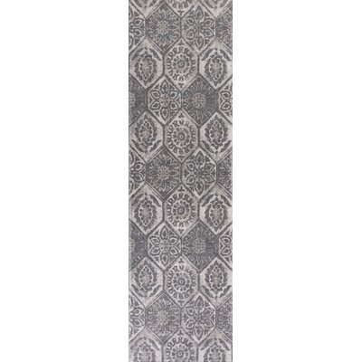 Clouser Gray Area Rug Rug Size: Runner 22 x 76