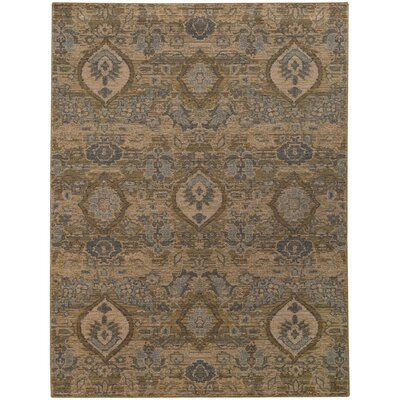 Tackett Brown/Blue Area Rug Rug Size: 53 x 76