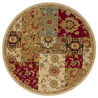 Tindell Beige Area Rug Rug Size: Rectangle 53 x 76