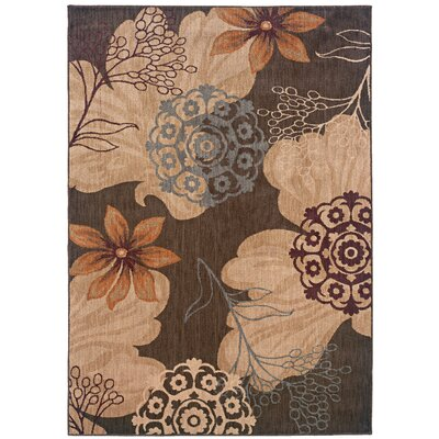Mathis Brown/Beige Area Rug Rug Size: 53 x 76