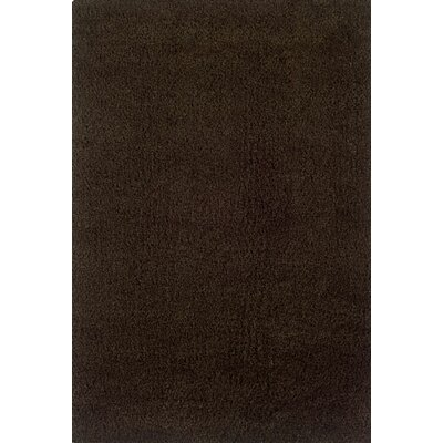 Mazon Solid Brown Area Rug Rug Size: 53 x 79