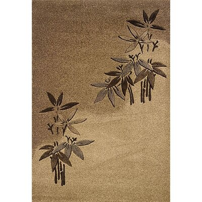 Rundell Brown/Beige Area Rug Rug Size: Rectangle 10 x 13