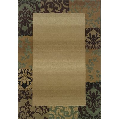 Sabanc Beige/Green Area Rug Rug Size: Rectangle 53 x 76