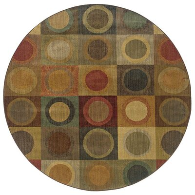 Ryles Green/Brown Area Rug Rug Size: Round 78