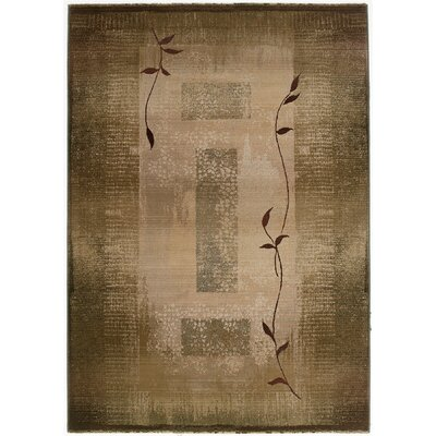 Bogard Brown/Green Area Rug Rug Size: 53 x 76