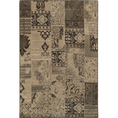 Schaumburg Brown/Black Area Rug Rug Size: 53 x 76