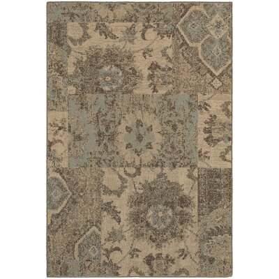 Schaumburg Tan/Blue Area Rug Rug Size: Rectangle 310 x 55