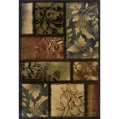 Matteson Brown Area Rug Rug Size: Rectangle 53 x 76