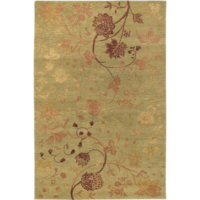 Sandoval Hand-Woven Sage/Raspberry Area Rug Rug Size: Rectangle 6 x 9