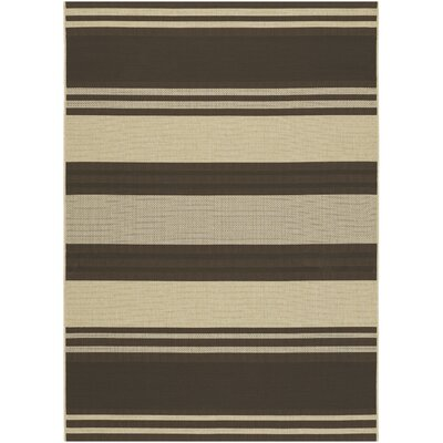 Sansom Chocolate/Cream Area Rug Rug Size: Runner 23 x 119
