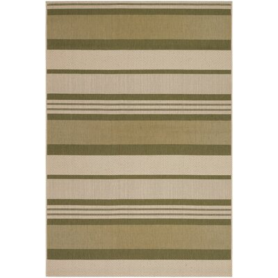 Sansom Green Indoor/Outdoor Rug Rug Size: 411 x 76