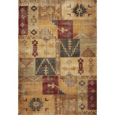Carson Agra Rug Rug Size: 76 x 96