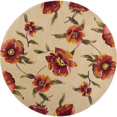 Las Cazuela Ivory Poppies Rug Rug Size: Round 56