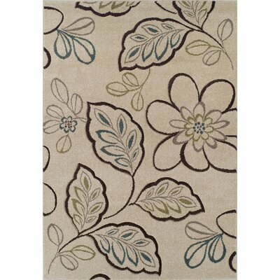 Buchan Ivory Area Rug Rug Size: Rectangle 53 x 77