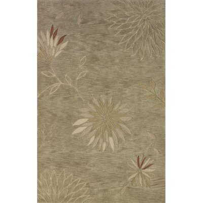 Bryant Aloe Area Rug Rug Size: Rectangle 36 x 56