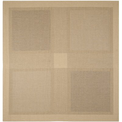 Barhill Large Boxes Outdoor Rug Rug Size: Square 710