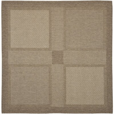 Barhill Brown/Natural Indoor/Outdoor Rug Rug Size: Square 67
