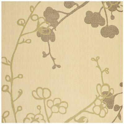 Barhill Natural/Olive Outdoor Area Rug Rug Size: Square 67